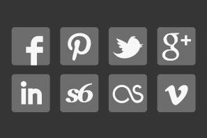 social media icons gray icons set preview
